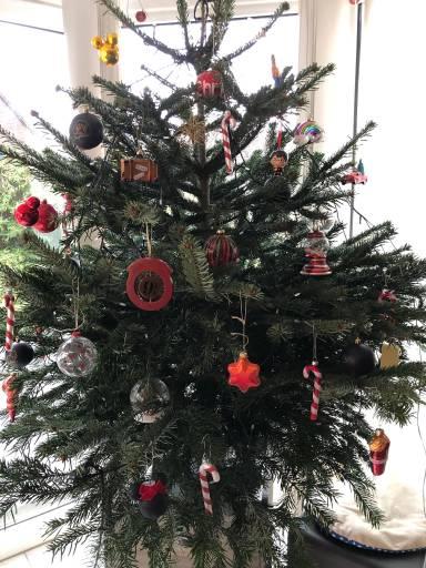 In Diesem Sinne Frohe Weihnachten.Schwatzgelb De Forum Frohe Regenbogen Baum Weihnachten